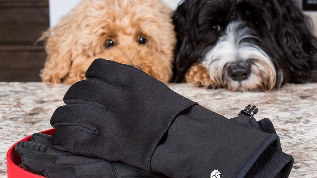 Walkease: The World's First Winter Glove For Dog Owners project video thumbnail