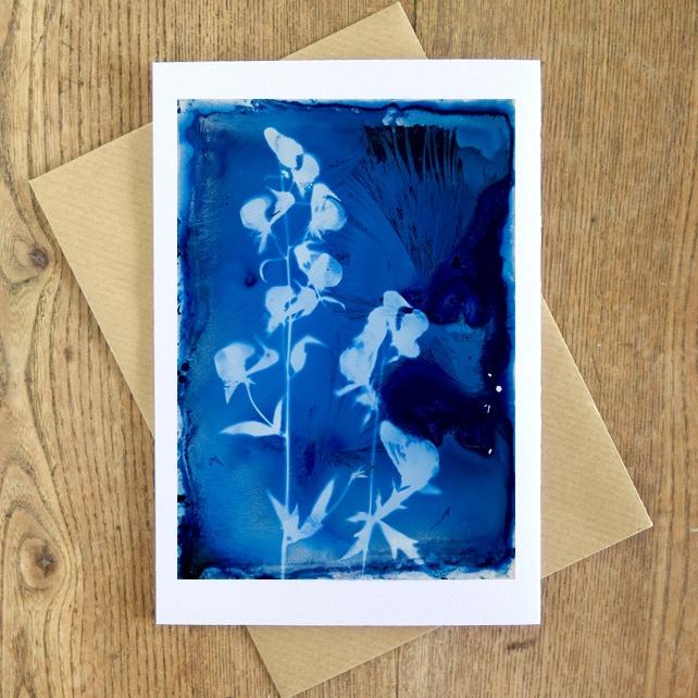Luminaria Friend: Handmade Cyanotype Thank You (example)
