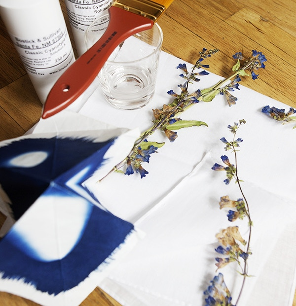 Luminaria Party: Cyanotype Party for 10