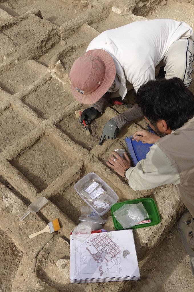 Excavando el jardín funerario de hace 4.000 años. / Excavating the funerary garden 4.000 years old.