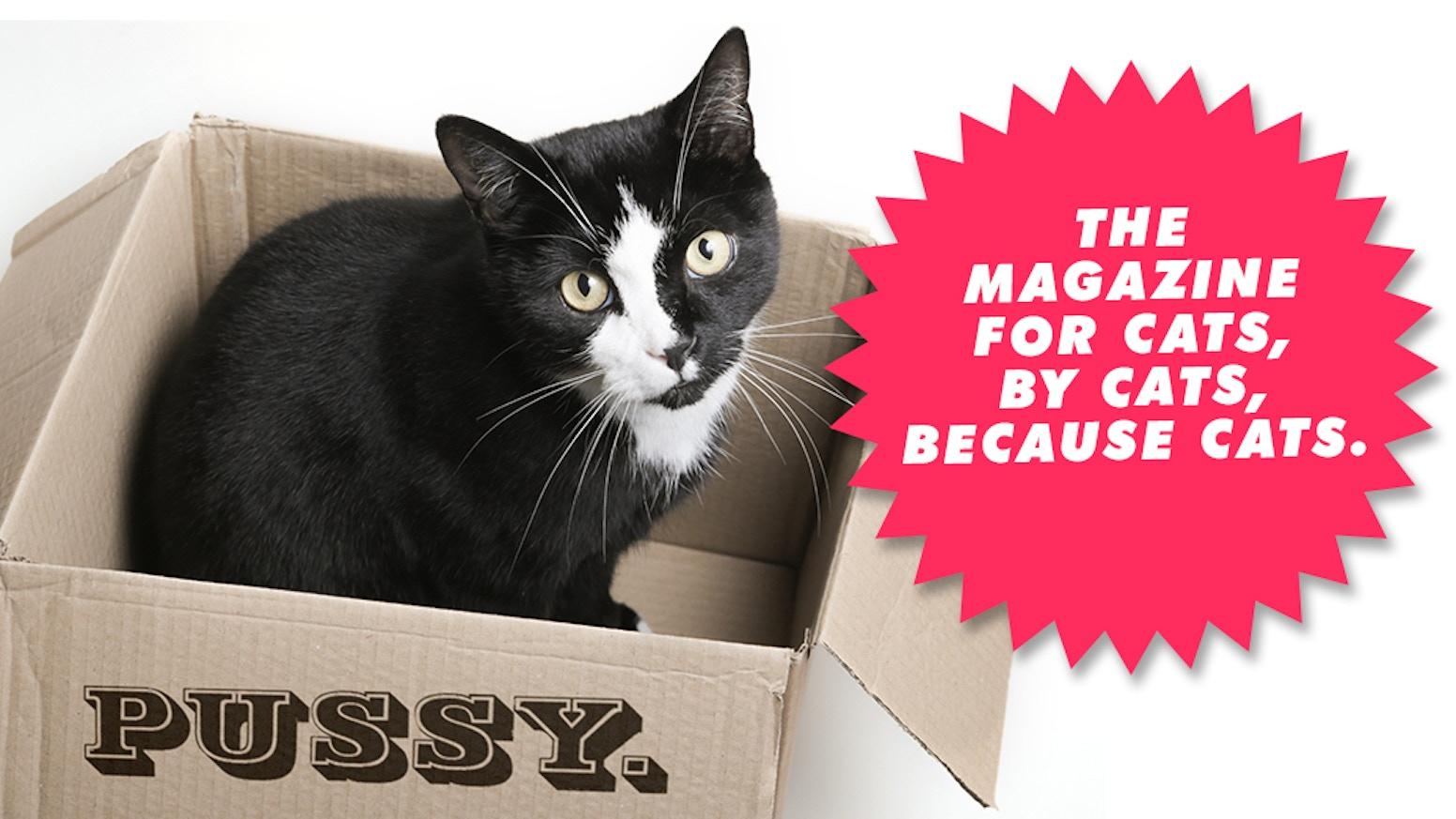 Pussy Magazine by Pam Communications — Kickstarter