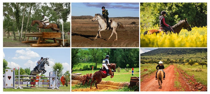 EquiSure for all horse riders