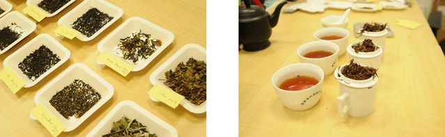 Rounds of rigorous internal testing to select the right tea.