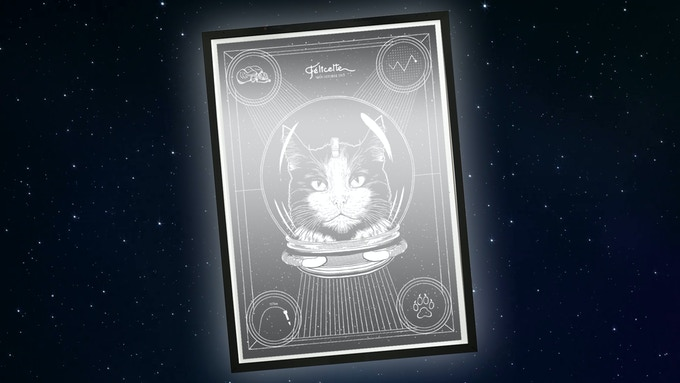 £250 reward — Limited Edition Framed Print