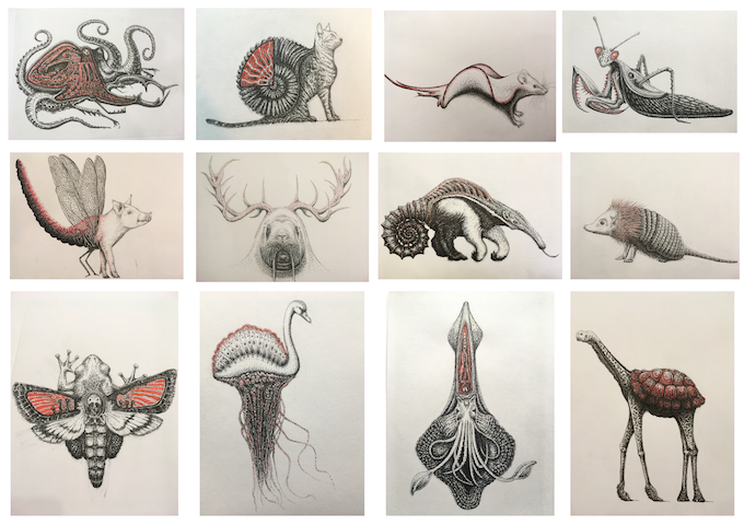 A selection of inktober drawings so far