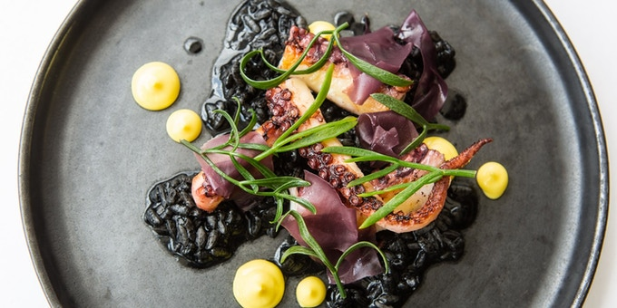 Octopus with saffron, black risotto and pickled dulse