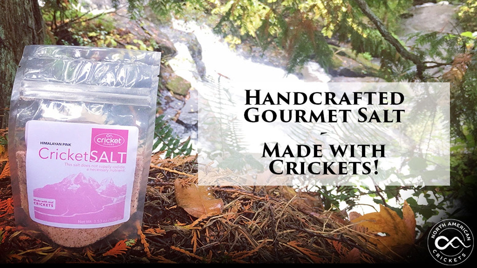 Cricket Salt - Taste the Future with handcrafted gourmet salts made with real crickets here in Portland, Oregon - ships early December.