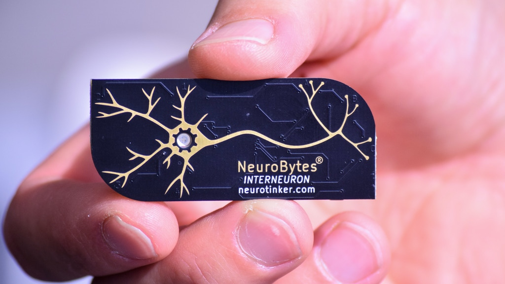 NeuroBytes: Electronic Neuron Simulators project video thumbnail