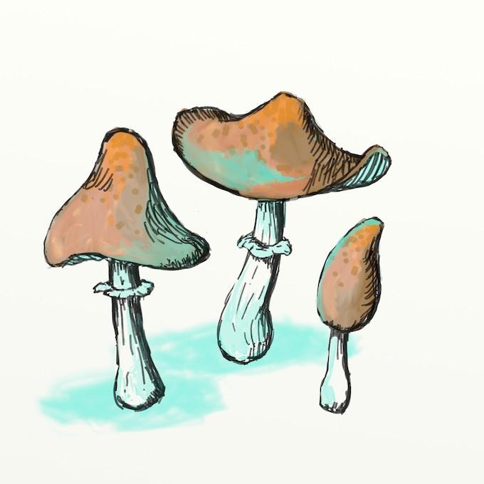 Pewter Sprue w/ 7 mushrooms, concept art