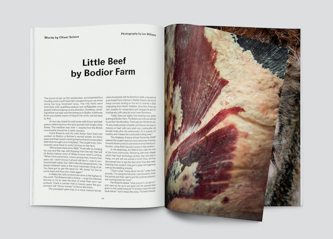 Little Beef spread from Pasture Issue 0