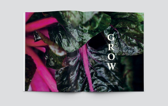 Kew Gardens spread from Pasture Issue 0
