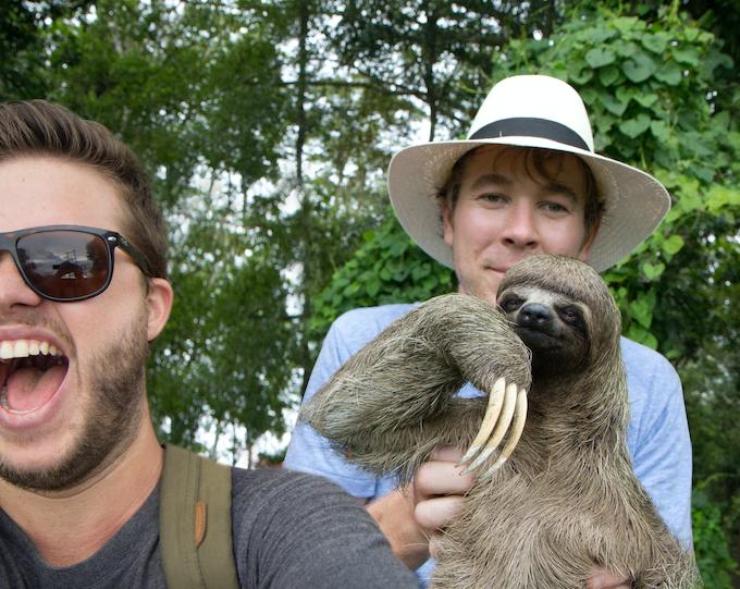Heya internet, I hear you liked sloths...