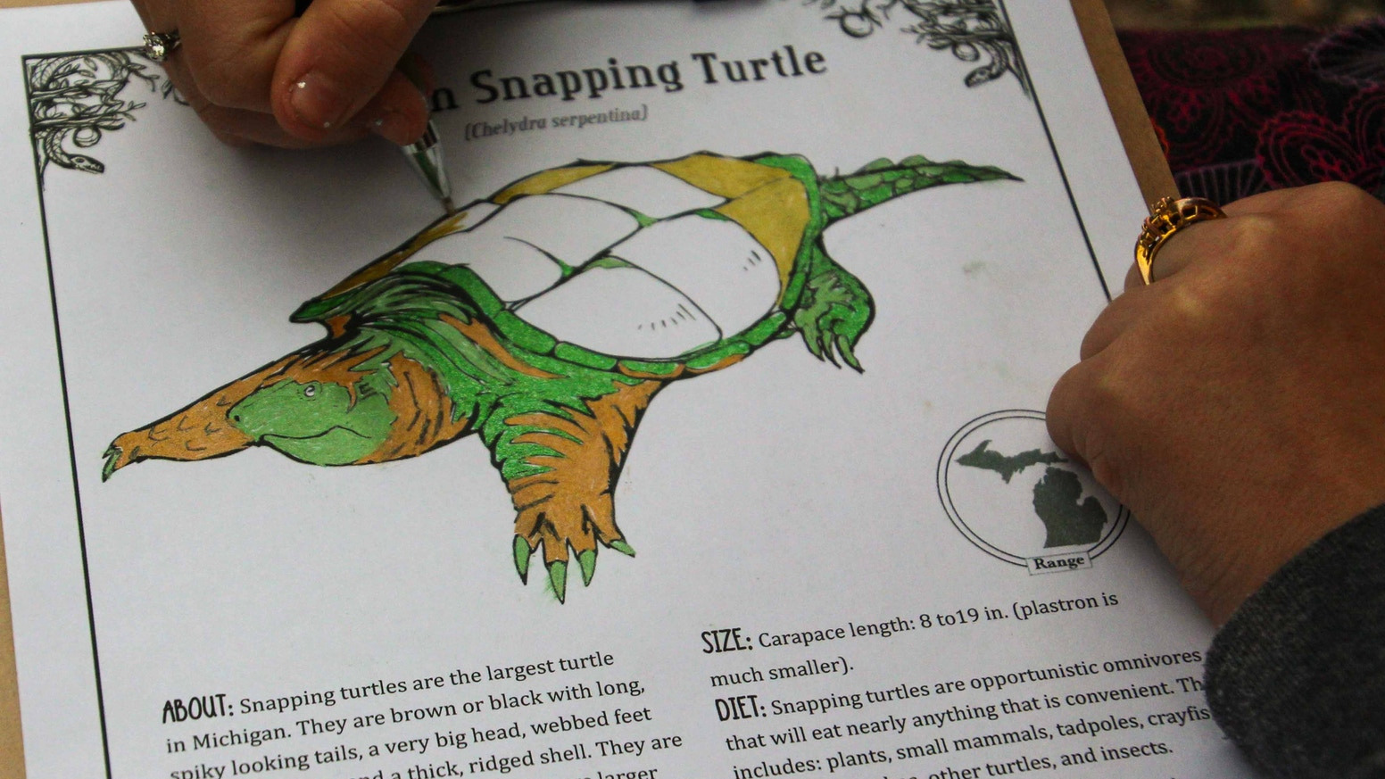 A New Book About Michigan Animals For Kids And Adults Includes Natural History Info Coloring Pages Nature Explorers Activities