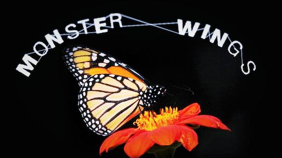 Monster Wings Funding