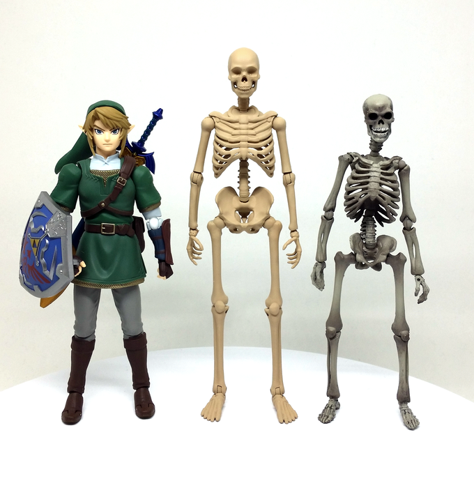 Height Comparison with Figma Link and Revoltech Skeleton