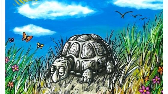 The Adventures of Grumpy Tortuga Children's Book