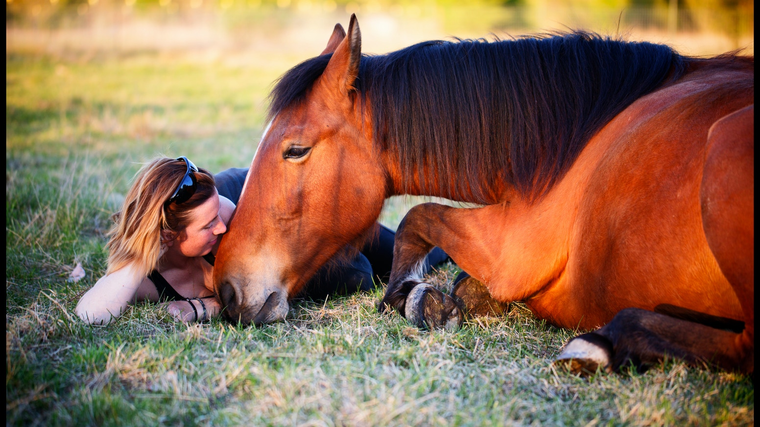 This movie will explore training in movement as we trek across Costa Rica with two rescued horses toward their second chance at life.