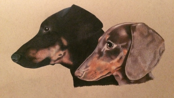 Pet Portraits by Craig - Pencil Drawing Commissions