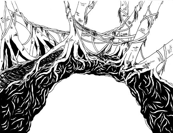 The Root Bridges of Haemae