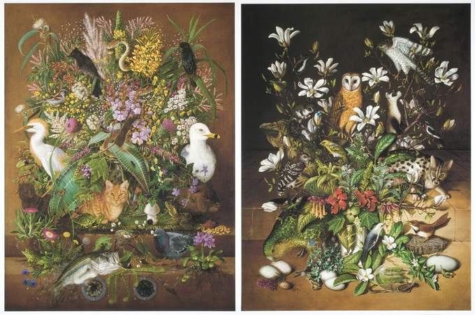 "$3,000, Isabella Kirkland's ""Taxa,"" a suite of 6 archival digital prints in cloth bound hard box with monograph about the project. 35 x 26.5 inches."