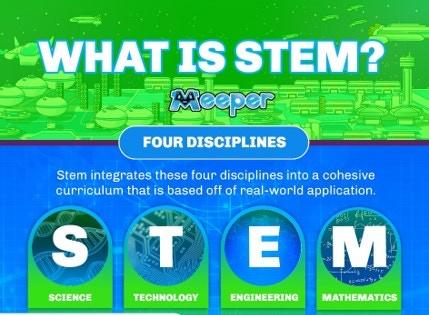 STEM Disciplines