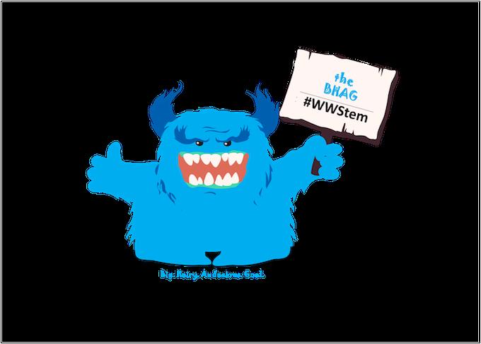Meeper BHAG #WWStem