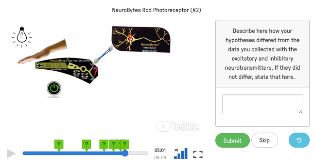 NeuroBytes formative assessment delivered using EdPuzzled video experiments