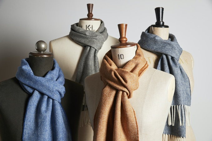 Colour Pack of Four Scarves