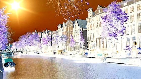Untitled Amsterdam Film Project