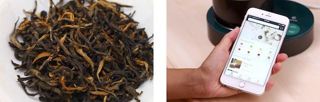 Brewing Great Tea, the Qi Aerista Way