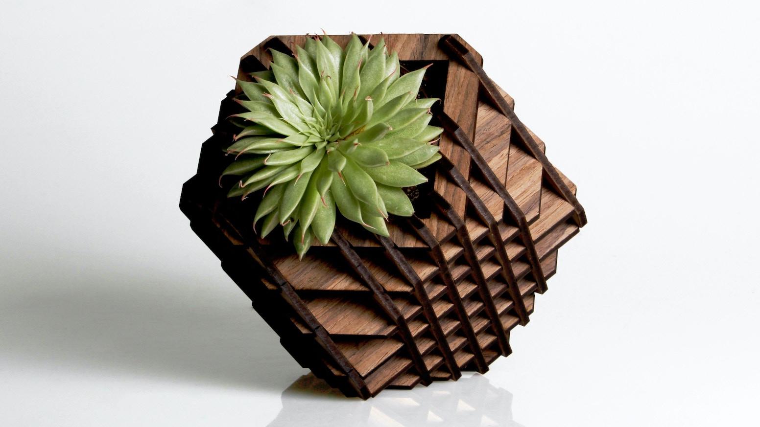 Hexagón Geometric Design | Mexico Creates