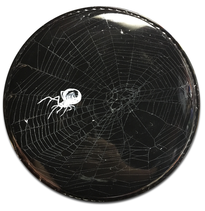 This is an actual web and actual little bugs and stuff floating in the web that day! (Spider painted by VanWilliams