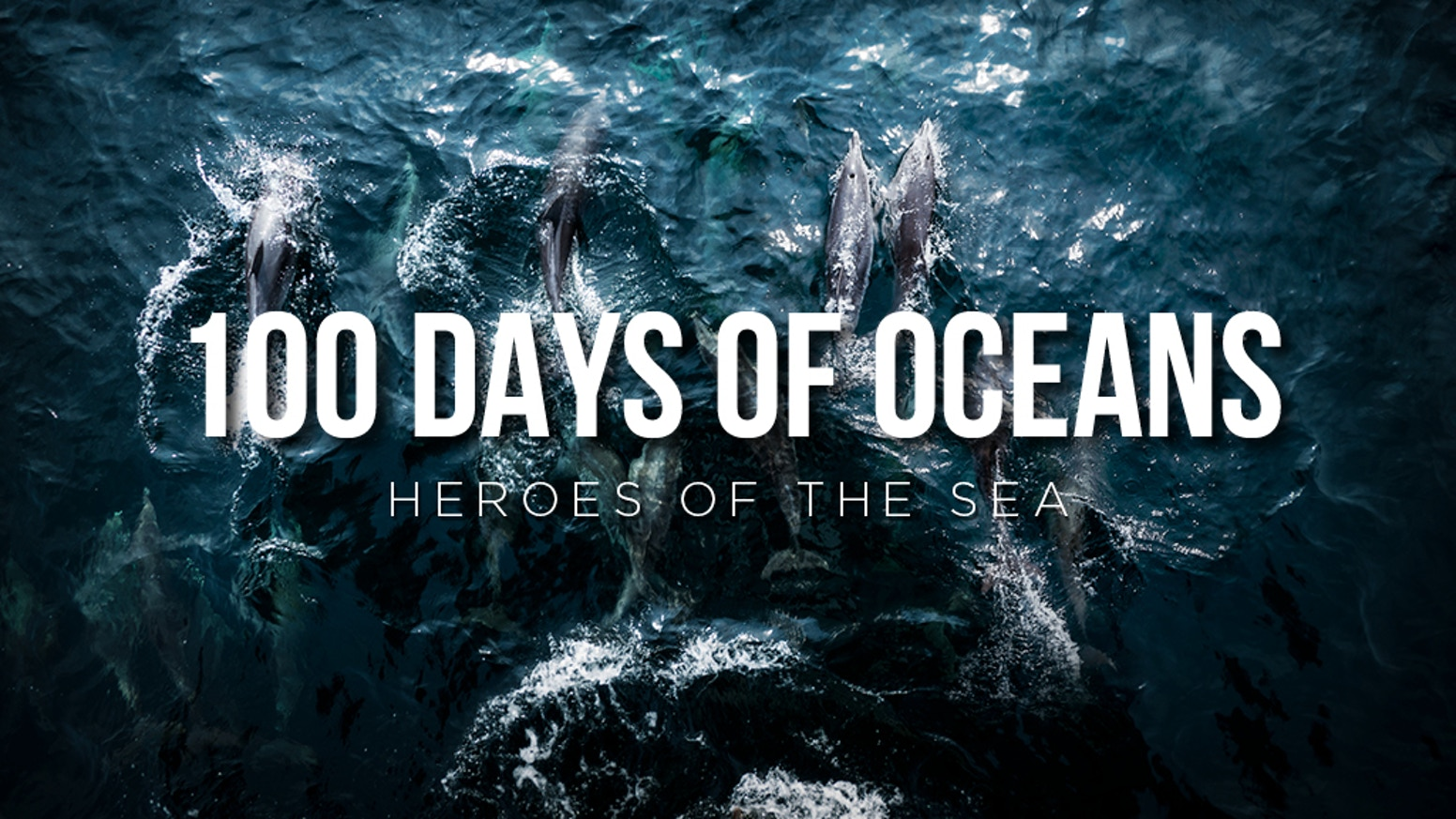 100 DAYS OF OCEANS - Heroes of the Sea