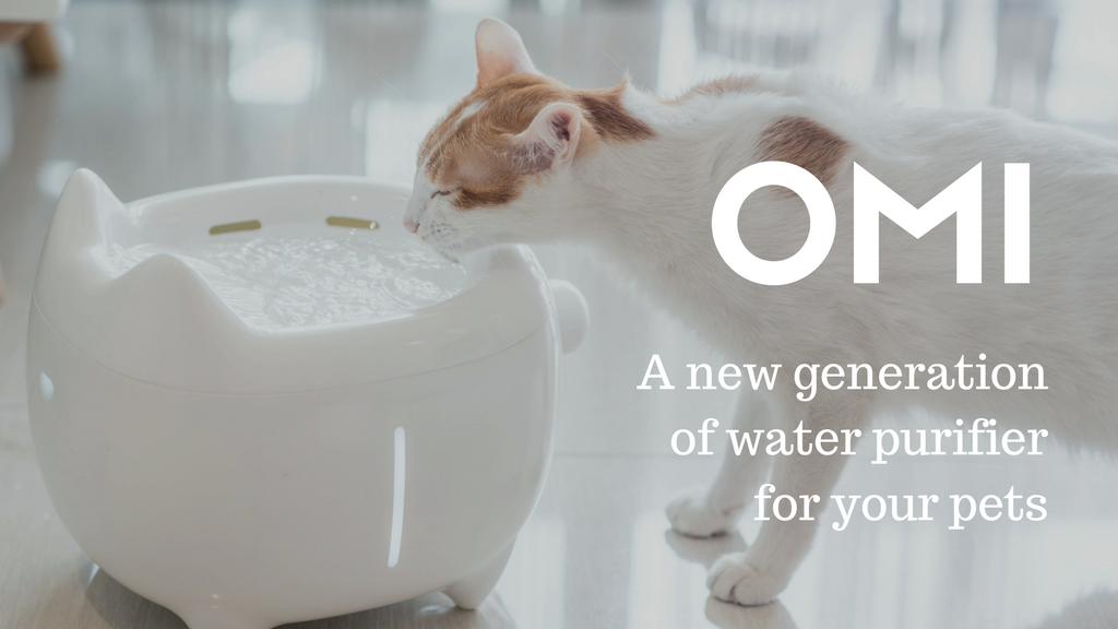 OMI, a self-cleaning water purifier for pets. project video thumbnail