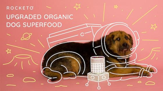 ROCKETO: A NASA Grade Organic Dog Super Food