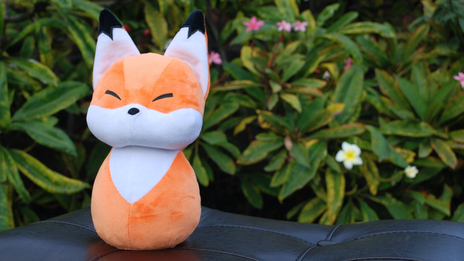 Natural Pop presents a good fox buddy who is soft and sweet!