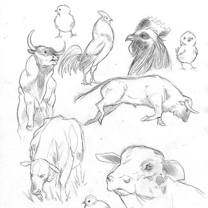 Animal sketches by Emiliano Correa