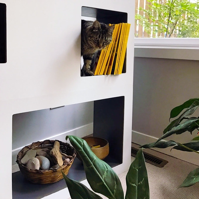 So Instead Of Losing A Corner To Cat Tree Or Condo You Get Space Organize Display And Store Whatever Like