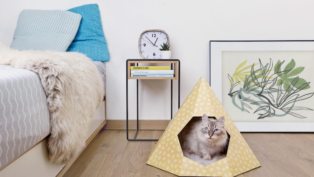 A cardboard tipi for your cat to play, hide and sleep project video thumbnail