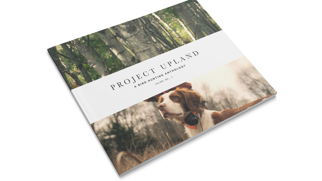 Project Upland - A Bird Hunting Anthology: Volume No. 1 project video thumbnail