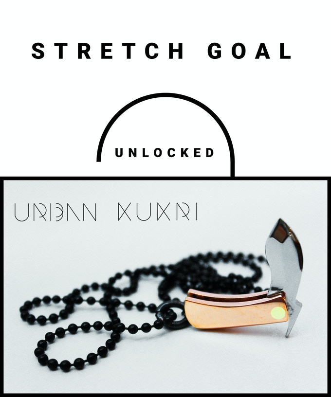 stretch goal #2 more than 23000$