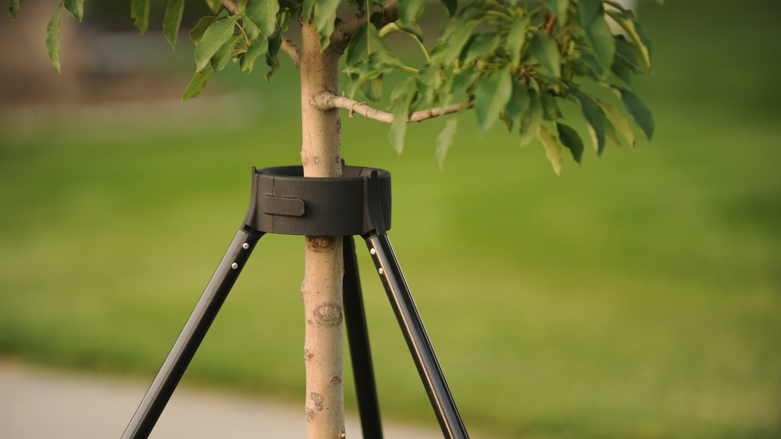 The first easy-to-install tree support that helps your trees grow as naturally as possible without disrupting your tree