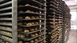 racks of macaroons
