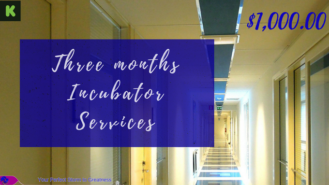 $1,000.00 Three Months Business Incubator Services