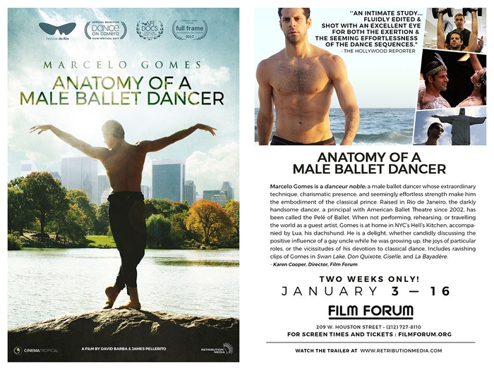 Four continents.  Two filmmakers.  One dancer.  A documentary portrait of ballet star Marcelo Gomes.