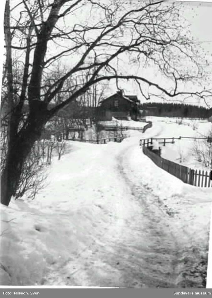 Historical Swedish Cabin