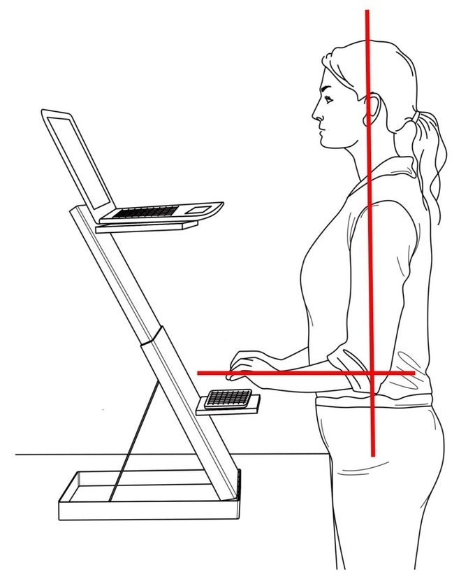 To be ergonomically correct when standing, users' arms should be parallel to the floor, and their neck in an upright, neutral position.