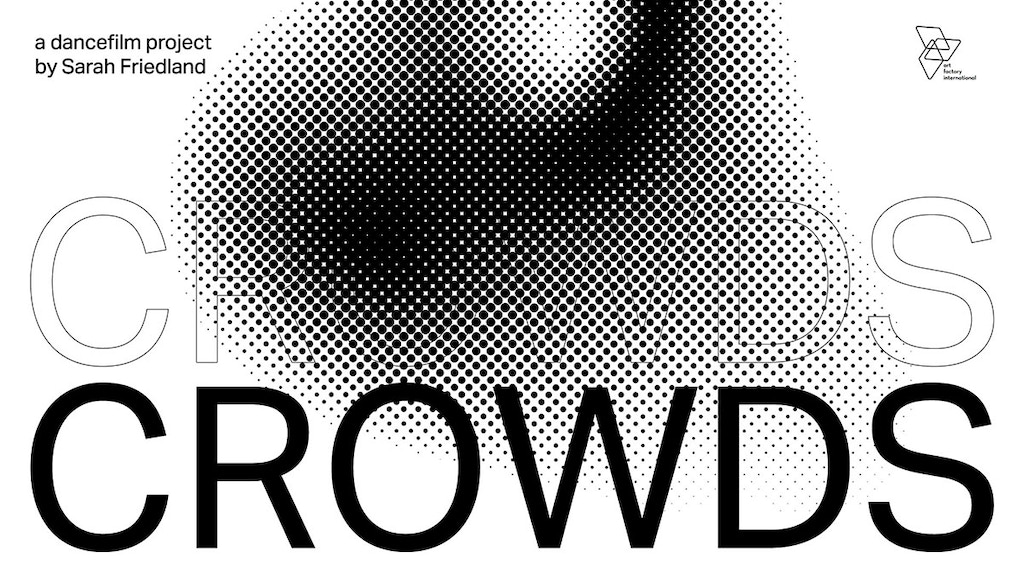 CROWDS project video thumbnail