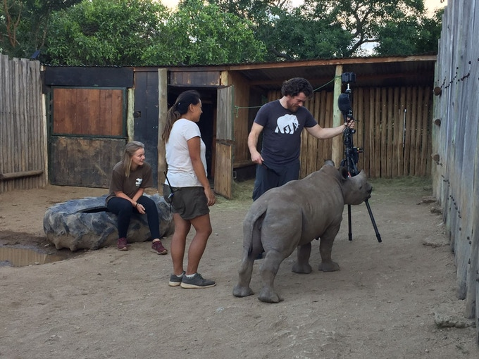 Filming Orphaned Rhino in Africa
