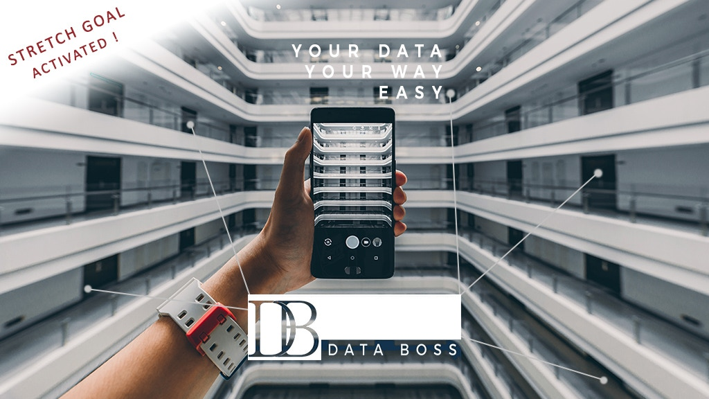 Data Boss: easily find all your data anytime, anywhere
